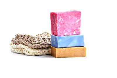 Saponaria officinalis in a soap