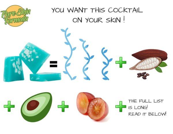 ingredients_seaweed soap